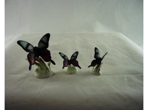 Vlinder set blauw streep 5.5cmH