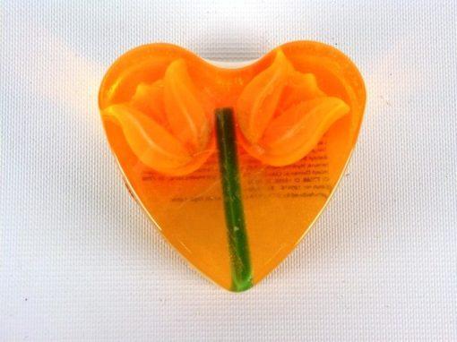 Zeephart Oranje Tulp