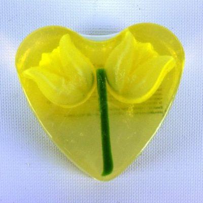 Zeephart Gele Tulp
