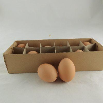 Kippeneieren bruin 5.5cmH doos à 12 stuks