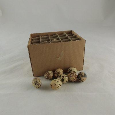 Kwarteleieren doos à 60 stuks