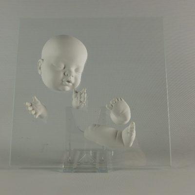 Babys in diverse afbeeldingen