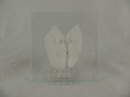 Kus wit op glas 11x11cm