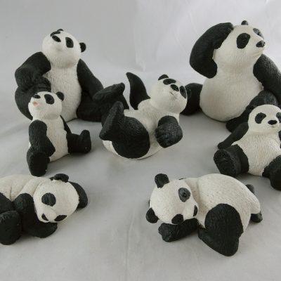 Panda's met een vrolijke uitstraling