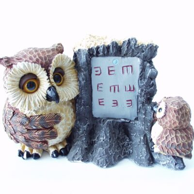 Uil OPTICIAN & OWLET 16x11x10cmH