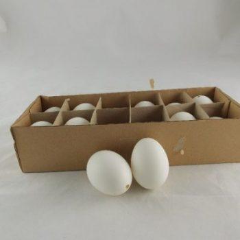 Kippeneieren wit doos 12 stuks